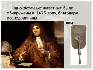 Одноклеточные животные были обнаружены в 1675 году, благодаря исследованиям