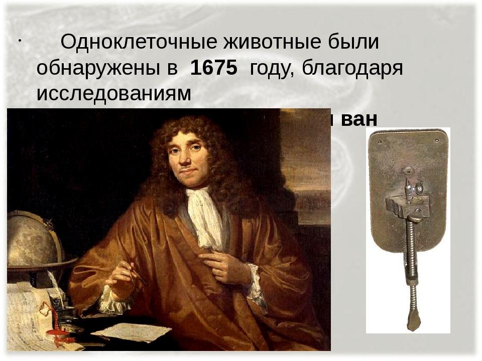 Одноклеточные животные были обнаружены в 1675 году, благодаря исследованиям...