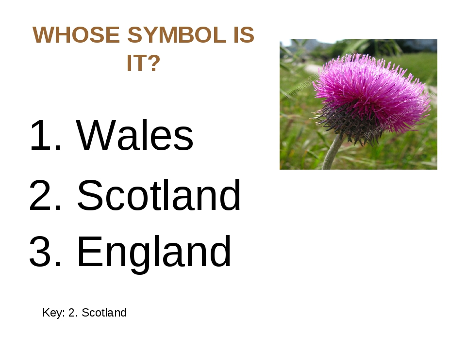 WHOSE SYMBOL IS IT? 1. Wales 2. Scotland 3. England Key: 2. Scotland