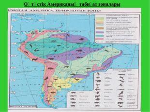 Оңтүстік Американың табиғат зоналары