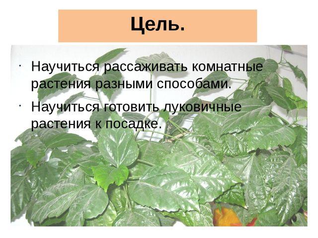 Цель. Научиться рассаживать комнатные растения разными способами. Научиться г...