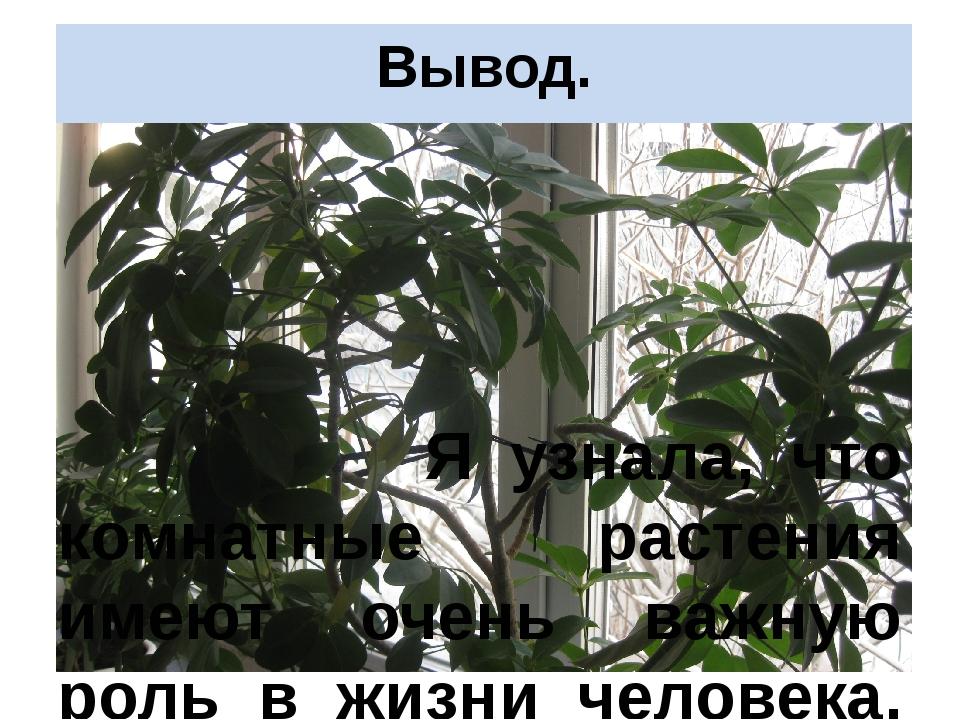 Вывод. Я узнала, что комнатные растения имеют очень важную роль в жизни челов...
