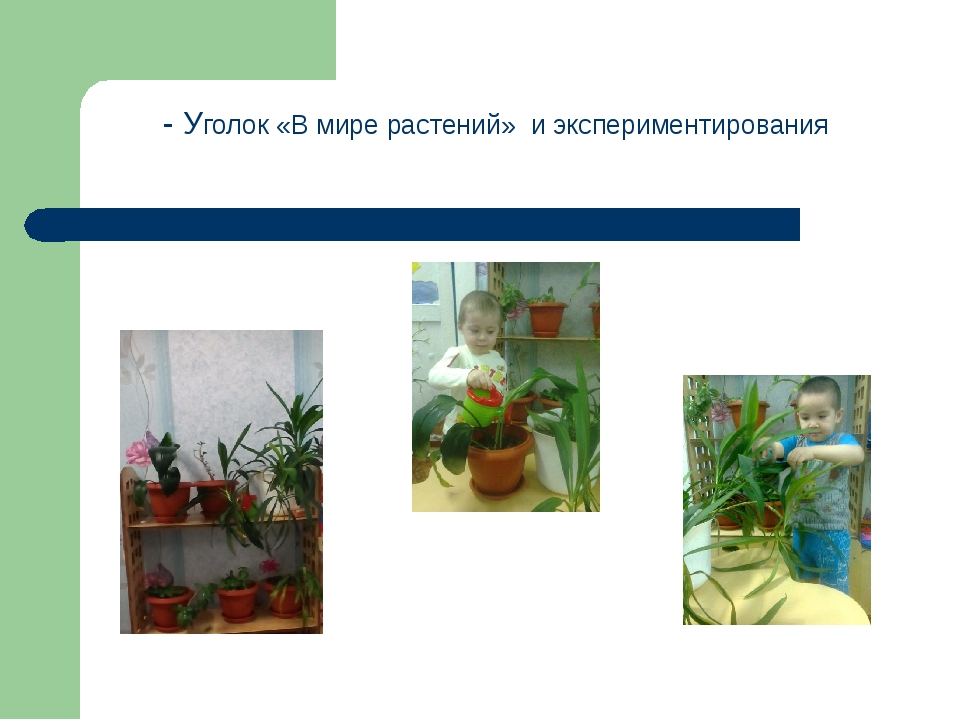 - Уголок «В мире растений» и экспериментирования
