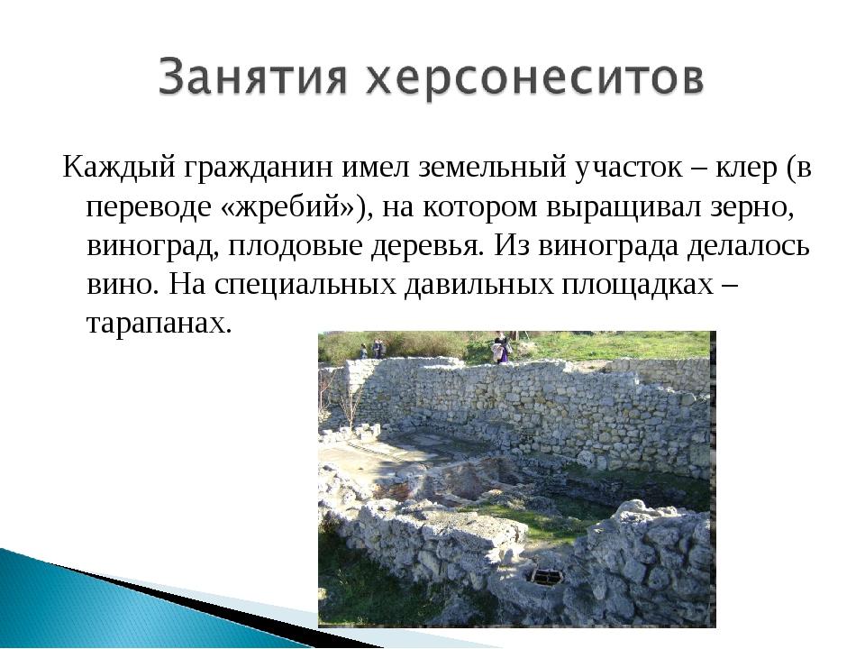 Каждый гражданин имел земельный участок – клер (в переводе «жребий»), на кото...