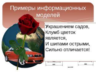 Примеры информационных моделей Украшением садов, Клумб цветок является, И шип