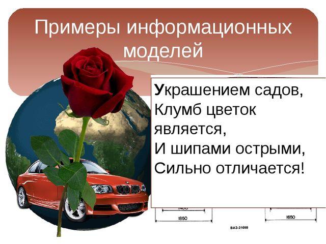 Примеры информационных моделей Украшением садов, Клумб цветок является, И шип...