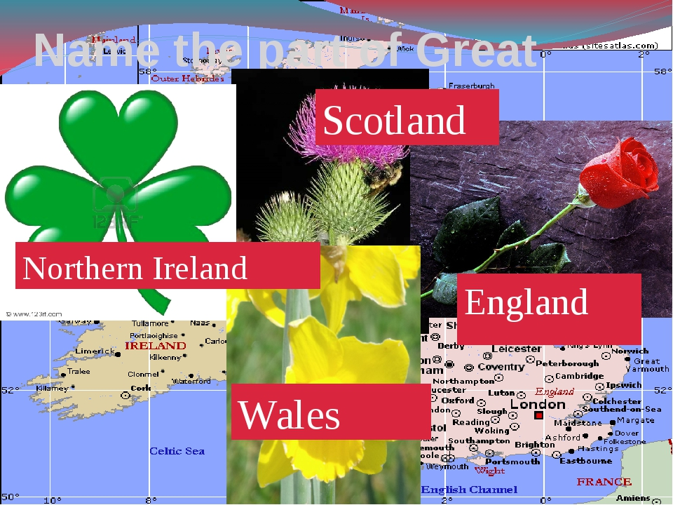 Name the part of Great Britain! England Scotland Northern Ireland Wales