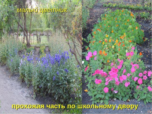 малый цветник прохожая часть по школьному двору
