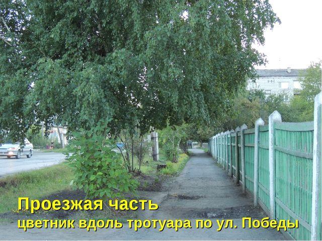 Проезжая часть цветник вдоль тротуара по ул. Победы