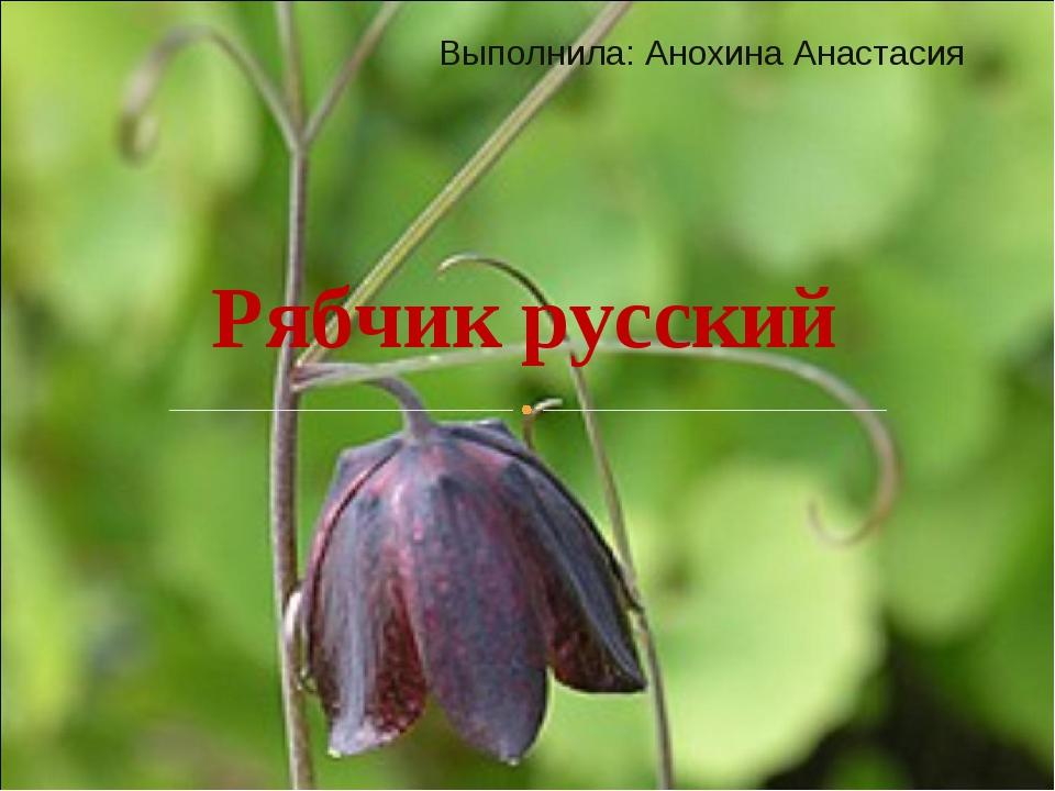 Выполнила: Анохина Анастасия Рябчик русский