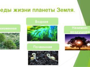 Среды жизни планеты Земля. Наземно-воздушная Почвенная Организменная Водная