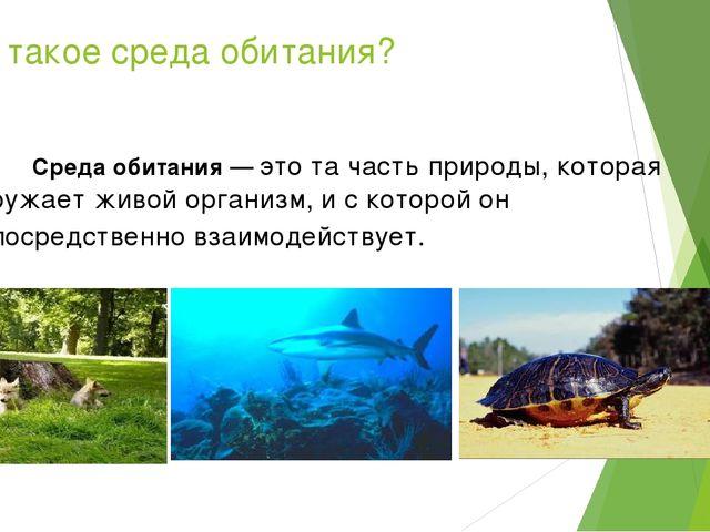 Что такое среда обитания? Среда обитания — это та часть природы, которая окру...