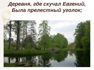 Деревня, где скучал Евгений, Была прелестный уголок;
