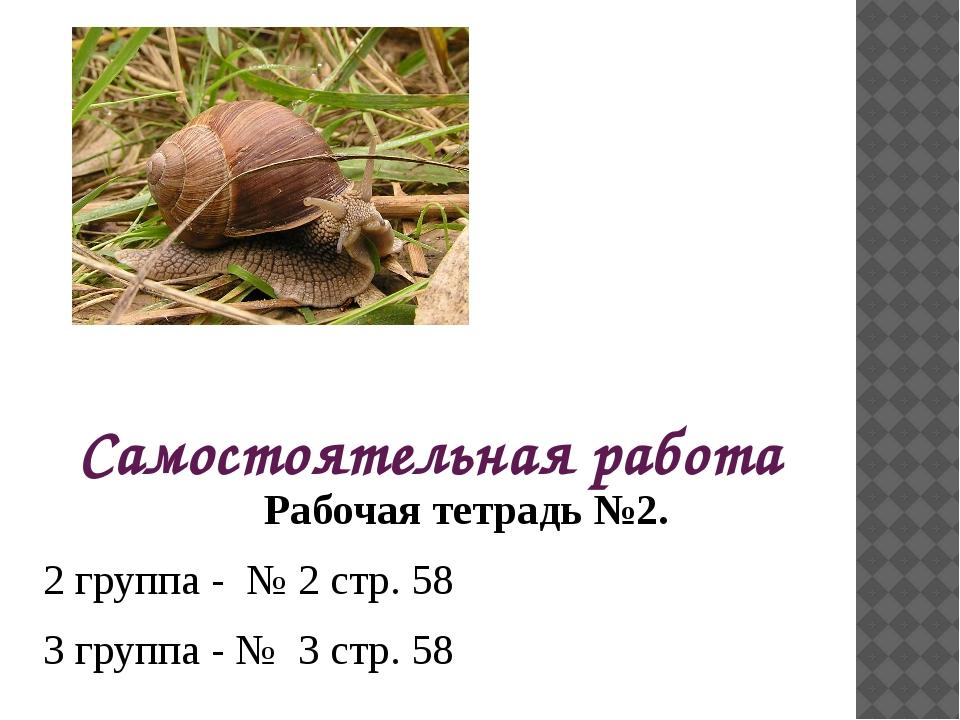 Самостоятельная работа Рабочая тетрадь №2. 2 группа - № 2 стр. 58 3 группа -...