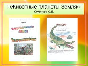 «Животные планеты Земля» Соколова О.В.