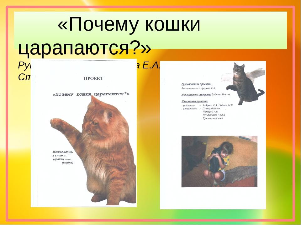 «Почему кошки царапаются?» Руководитель: Алфёрова Е.А. Старшая группа