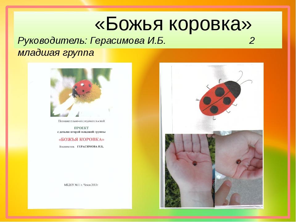 «Божья коровка» Руководитель: Герасимова И.Б. 2 младшая группа