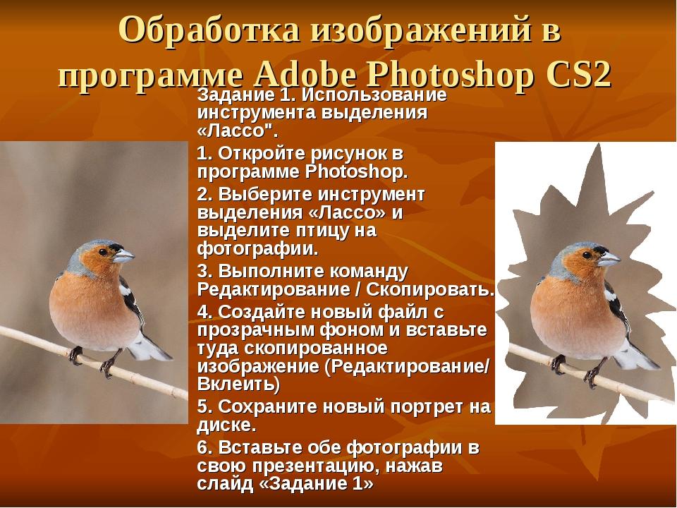 Обработка изображений в программе Adobe Photoshop CS2 Задание 1. Использован...