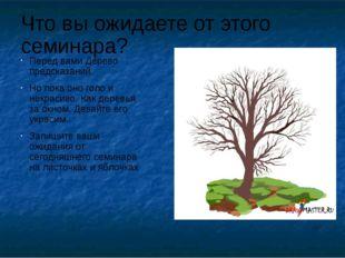 Что вы ожидаете от этого семинара? Перед вами Дерево предсказаний. Но пока он