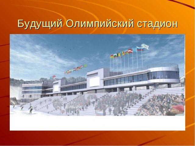 Будущий Олимпийский стадион