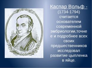 Каспар Вольф -(1734-1794) считается основателем современной эмбриологии,точне