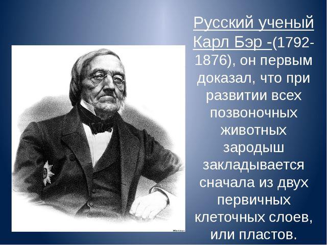 Русский ученый Карл Бэр -(1792-1876), он первым доказал, что при развитии все...