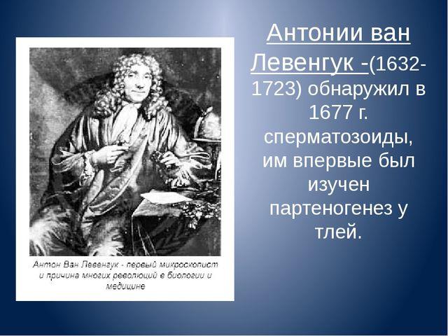 Антонии ван Левенгук -(1632-1723) обнаружил в 1677 г. сперматозоиды, им вперв...