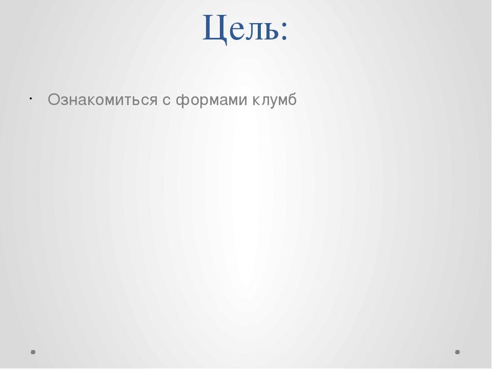 Цель: Ознакомиться с формами клумб