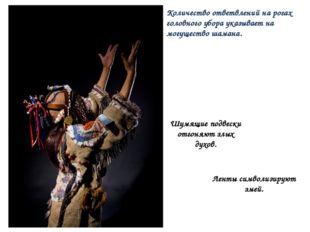 Количество ответвлений на рогах головного убора указывает на могущество шаман