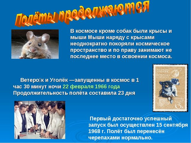 Ветеро́к и Уголёк—запущенны в космос в 1 час 30 минут ночи 22 февраля 1966...
