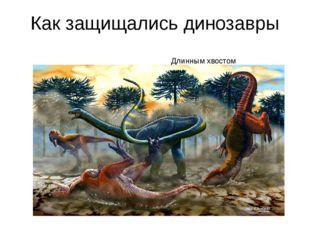 Как защищались динозавры Длинным хвостом Длинным хвостом