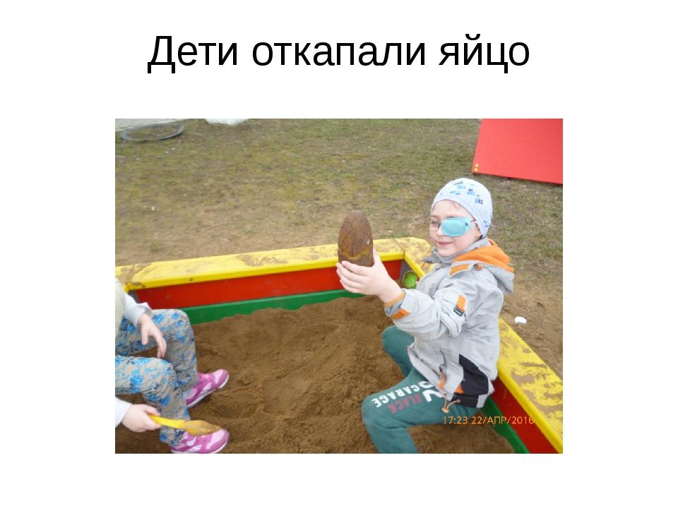 Дети откапали яйцо