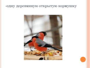 -одну деревянную открытую кормушку