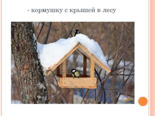 - кормушку с крышей в лесу