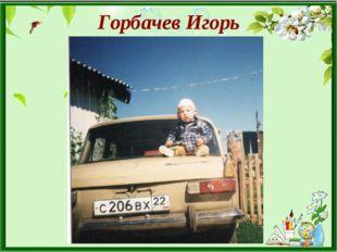 Горбачев Игорь