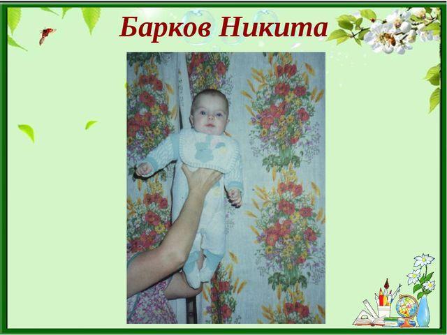 Барков Никита