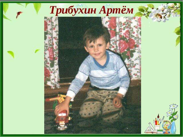 Трибухин Артём