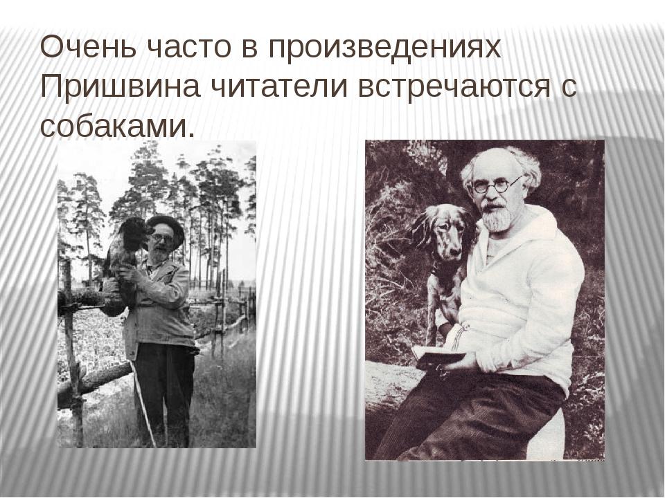 Очень часто в произведениях Пришвина читатели встречаются с собаками.