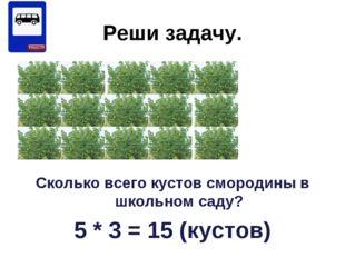Реши задачу. Сколько всего кустов смородины в школьном саду? 5 * 3 = 15 (куст