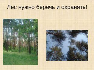 Лес нужно беречь и охранять!