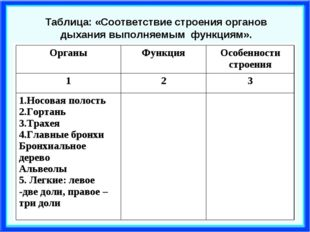 Таблица: «Соответствие строения органов дыхания выполняемым функциям». Органы