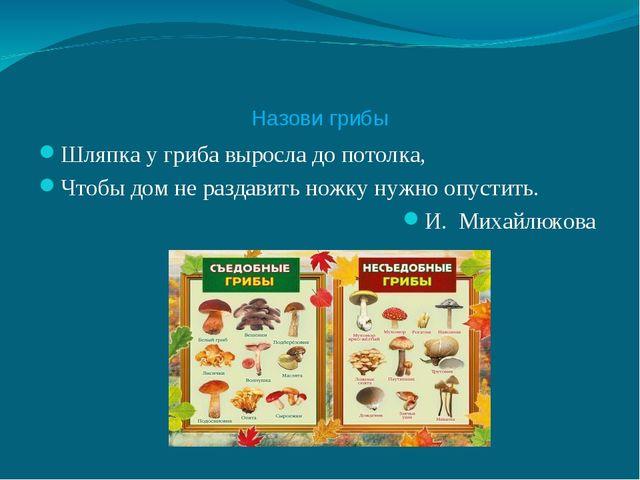 Назови грибы Шляпка у гриба выросла до потолка, Чтобы дом не раздавить ножку...