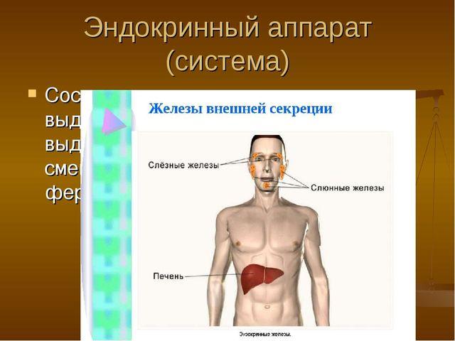 Эндокринный аппарат (система) Состоит из желез: эндокринных – выделяют гормон...