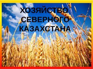 ХОЗЯЙСТВО СЕВЕРНОГО КАЗАХСТАНА