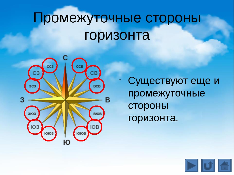 Устройство компаса Самая важная часть компаса – намагниченная стрелка на стал...