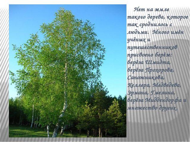 Нет на земле такого дерева, которое так сроднилось с людьми. Много имён учён...