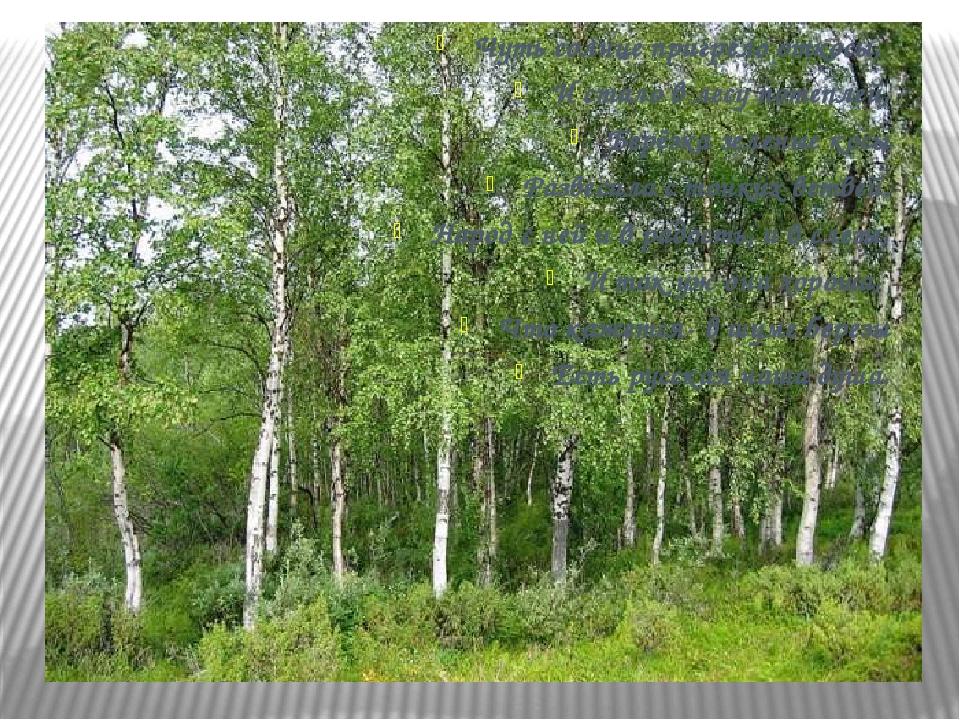 Чуть солнце пригрело откосы, И стало в лесу потеплей, Берёзка зеленые косы Ра...