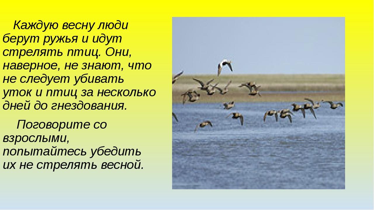 Каждую весну люди берут ружья и идут стрелять птиц. Они, наверное, не знают,...