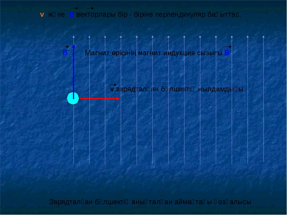 Магнит өрісінің магнит индукция сызығы В v және В векторлары бір - біріне пер...