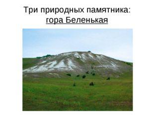 Три природных памятника: гора Беленькая